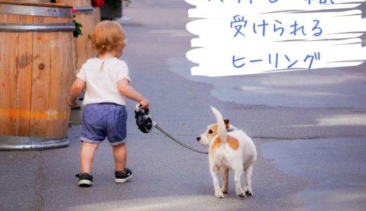 ペットやお子さんと一緒に受けられる無料の遠隔ヒーリング